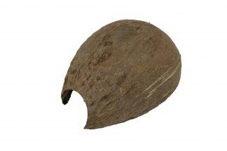 Large Coconut Hides – 5″ Hides