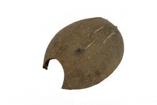 Medium Coconut Hides – 4″ Hides