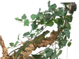Jungle Vine Cluster Cage Decoration