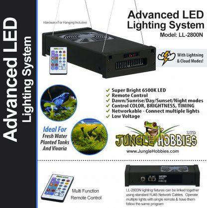 Mistking Single Advanced LED Lighting System Lighting
