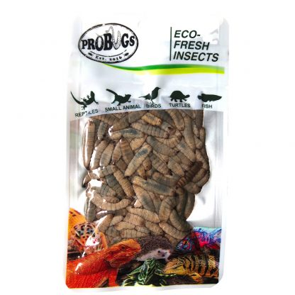 Probugs Black Soldier Fly Larvae (BSFL) Food