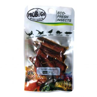 Probugs Grasshopper Food