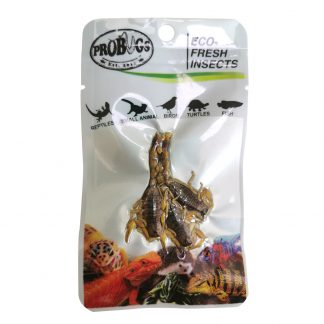 Probugs Scorpion Food