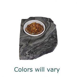 Small Worm Feeder Rock Bowls