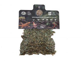 Probugs Black Soldier Fly Larvae Bulk Bag (150 gram) Probugs
