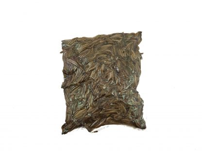 Probugs Mealworm Bulk Bag (300 gram) Probugs