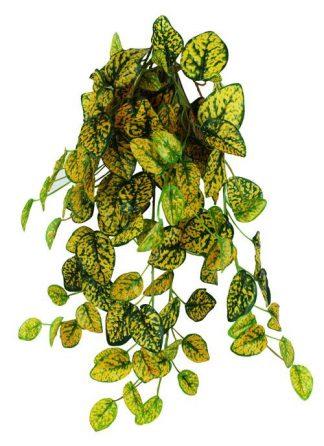 Pangea Hanging Bush 18″ Japanese Laurel Vines