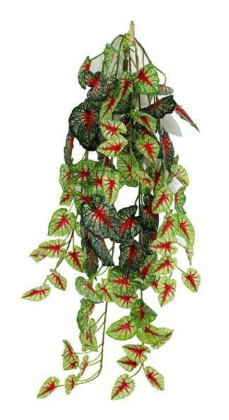 Pangea Hanging Bush 24″ Caladium Vines