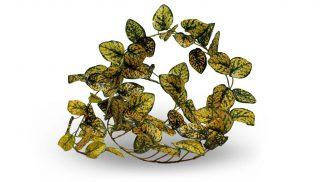 Pangea Leafy Vine Japanese Laurel Vines