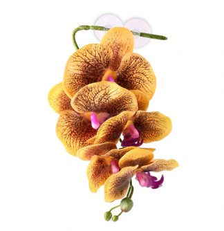 Pangea Hanging Orchids Yellow Vines