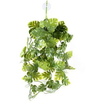 Pangea Plants Green Vines