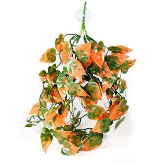 Pangea Plants Orange Vines